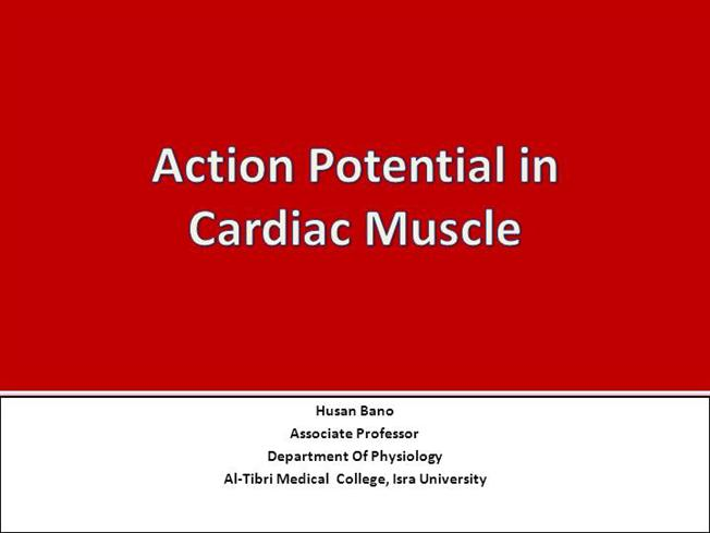Cvs 8 Action Potential In Cardiac Muscle Authorstream