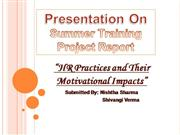 Dissertation For Mba Project Management