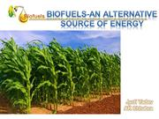 BIOFUEL-AN ALTERNATE SOURCE OF ENERGY