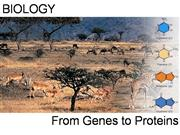 From_Gene_to_Protein[1]