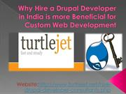 Hire a Drupal Programmer for Custom Drupal CMS Development in USA