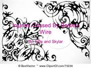 injuries_caused_by_barbed_wire