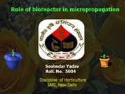 Role of bioreactor in micropropagation of horticultural crop