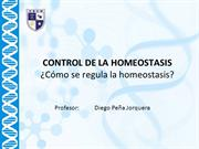 03 03 Como se regula la homeostasis?