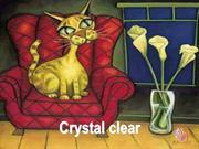 Crystal Clear-- Quotes