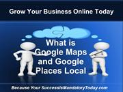What is Google Maps and Google Places Local