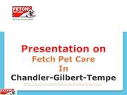 Comprehensive Pet Care services by the Fetch Pet Care!