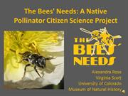 The Bees' Needs Presentation with Narration