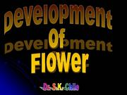 Genetics of Flower Development