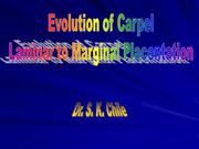 Evolution of Carpel