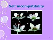 Self incompatibility