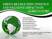 GREEN REVOLUTION; POSITIVE AND NEGATIVE IMPACT ON AGRICULTURE