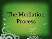 11 Mediation Process