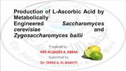 Production of L-Ascorbic Acid by Met. Engineered S. cerevisiae and