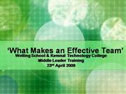 What Makes an Effective Team?