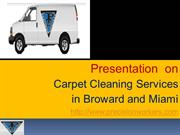 Precision workers and their carpet cleaning services in  broward and M