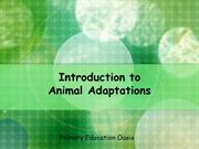 animal_adaptations
