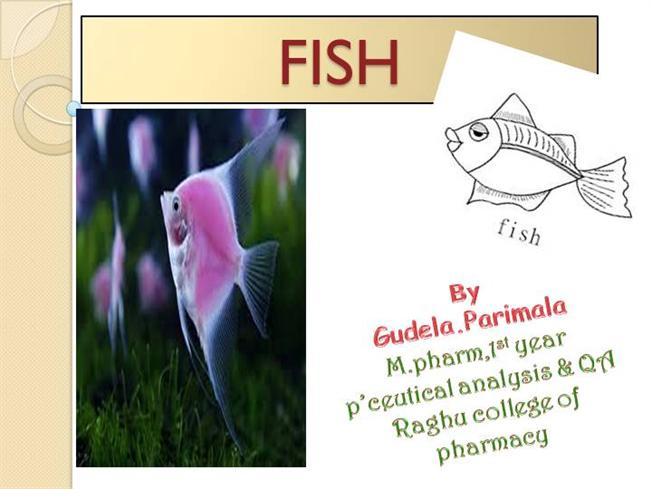 PPT FISH |authorSTREAM