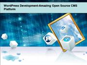 WordPress Development-Amazing Open Source CMS Platform