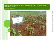 Research @2013 on Nirogen fertilizer use efficiency on maize output