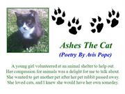 Ashes The Cat (Poetry By Avis Pope)