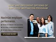 What Are Different Options of Employee Motivation Program