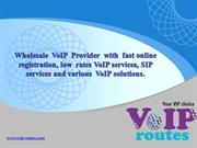 Wholesale VoIP Provider | VoIP Routes