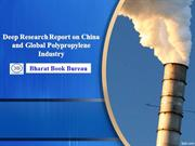 2013 Deep Research Report on China and Global Polypropylene Industry