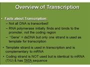 Transcription - Synthesis of RNA from DNA