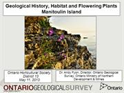Wildflowers and geology, Manitoulin Island, Ontario