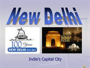 celebrating 100 year of delhi