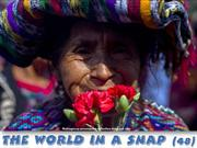 The World in a SNAP (48)