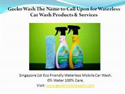 Wax and Shine at Gecko Wash Singapore