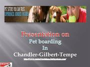 Services That Meet the Need of Pet and Pet Parent
