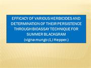 EFFICACY OF VARIOUS HERBICIDES AND DETERMINATION OF THEIR PERSISTENCE