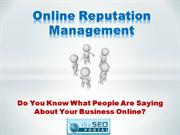 theseoportal online reputation management