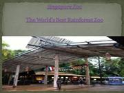 The World's Best Rainforest Zoo