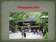 Enjoy All the Wildlife Zones Together On Singapore Vacation.