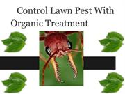 green pest control tampa