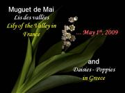 Have a nice May Day 2012