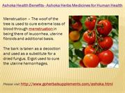 Ashoka Health Benefits - Ashoka Herbs Medicines for Human Health