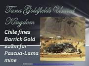 Chile fines Barrick Gold (a Tana Goldfields United Kingdom Reviews)