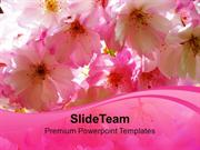 Blossoms Beauty Nature PowerPoint Templates PPT Themes And Graphics 02