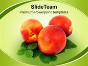 Healthy Diet Food PowerPoint Templates PPT Themes And Graphics 0213