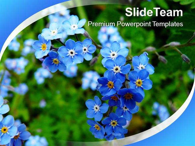 Blooming Flowers Nature Powerpoint Templates Ppt Themes And