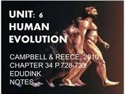 UNIT 6 HUMAN EVOLUTION A