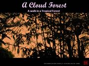 A Cloud Forest - A walk in a Tropical Forest