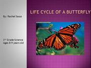 Life Cycle of a Butterfly [Autosaved]