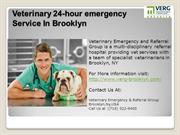 veterinary 24-hour emergency