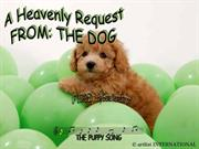 A Heavenly Request from the Dog